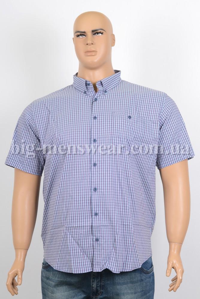 Мужская Одежда Очень Больших Размеров