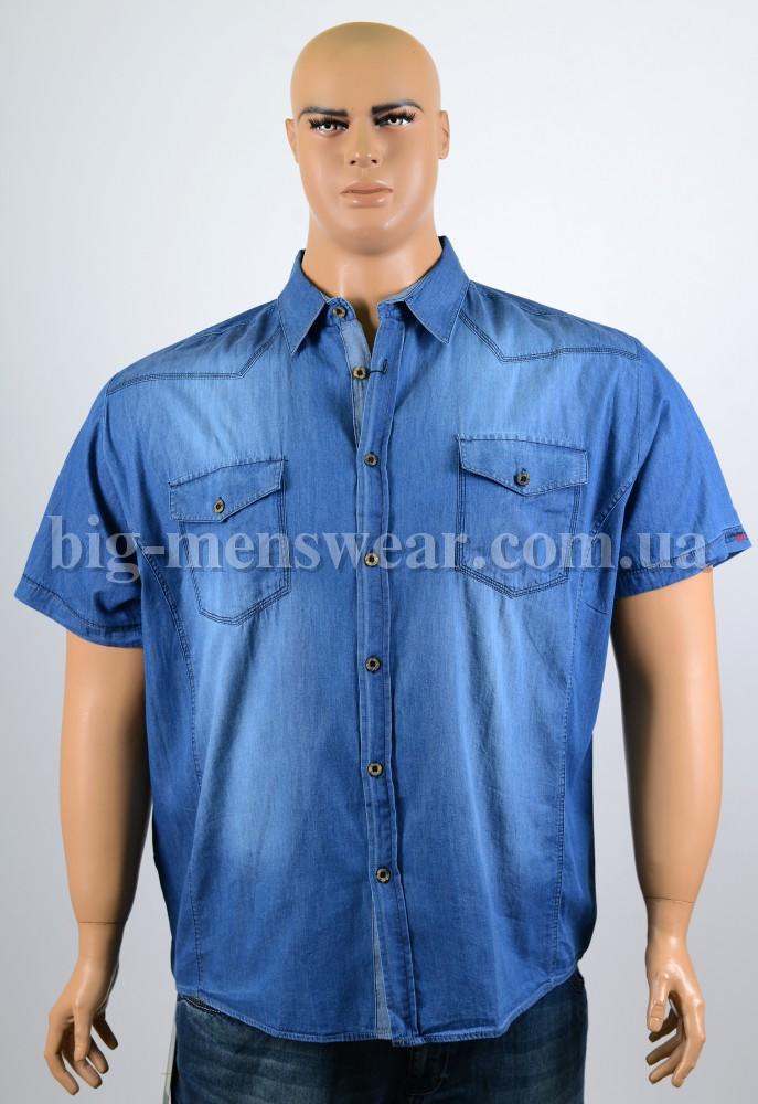 Купить детские блузки оптом от производителя
